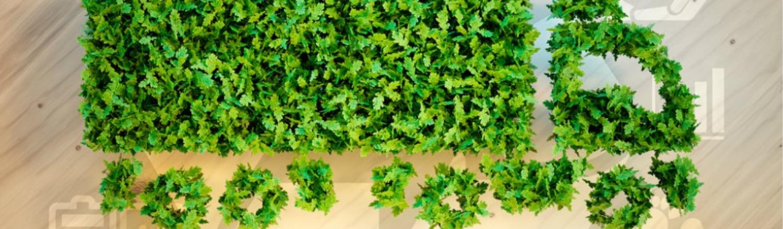 Nestlé investe em frota sustentável e terá 100 veículos elétricos e movidos a biocombustível